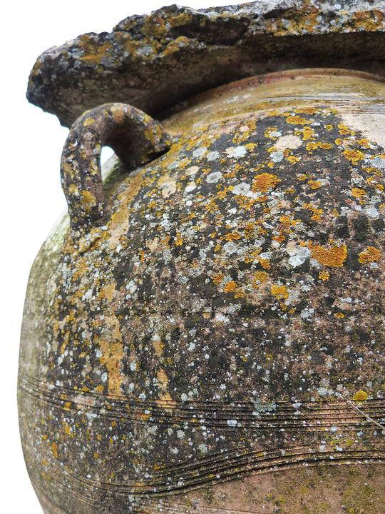 Jar, Ceramic, Lichens, Old, Weather