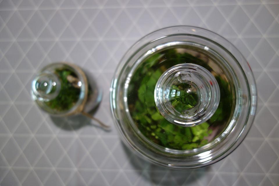 Jars, Plants, Forest In A Jar, Macro