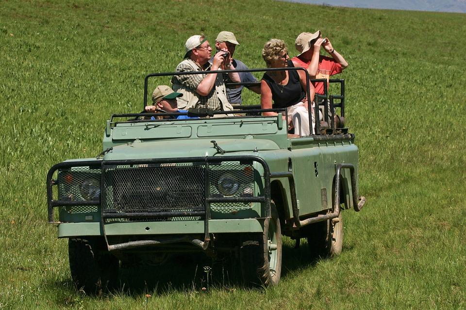 Land Rover, Jeep, Safari, Old, Defender, Tourists