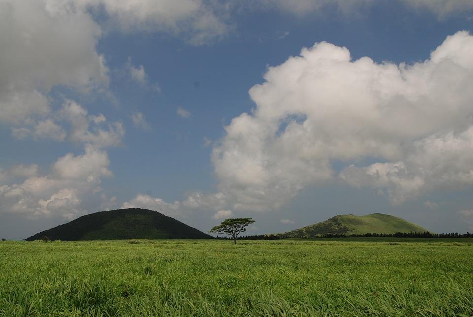 Jeju Island, Ascension, Meadow