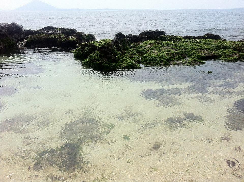 Jeju Island, Jeju, Sea, Udo, Olle Gill
