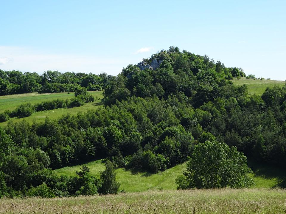 Jerzmanowice, Poland, Landscape, Nature, Rock