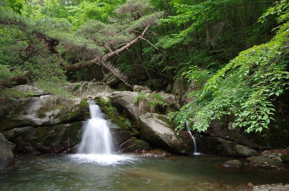Jiri, Yongso Falls, Nature