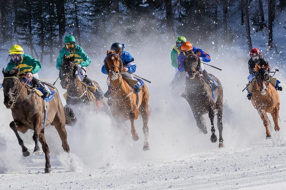 Horse Racing, Gallop, Jockey, Horses, Equestrian, Speed