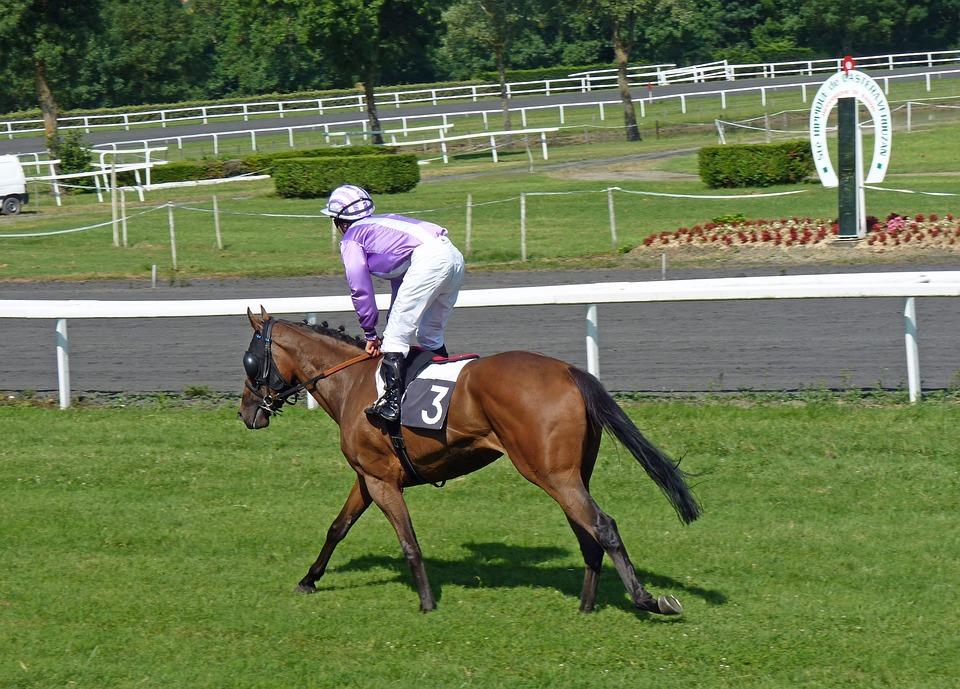 Hippodrome Horses Racing Jockeys Castera Verduzan