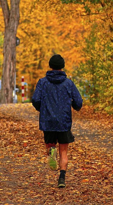 Jogger, Autumn, Park, Run, Man, Movement, Sporty