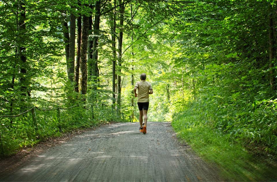 Run, Jog, Sport, Leisure, Sporty, Healthy, Jogging