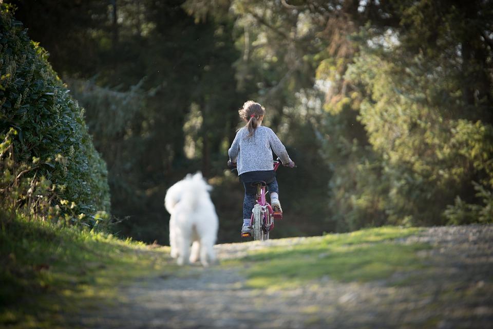 Girl, Biking, Dog, Summer, Vacation, Journey, Fun