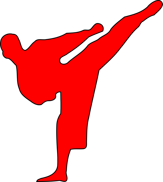 Martial Arts, Red, Fight, Karate, Silhouette, Judo