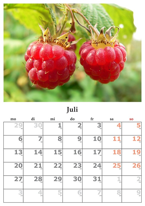 Free Photo July Month July 2015 Calendar Max Pixel