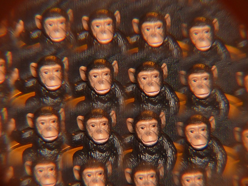 Monkey, Kaleidoscope, Art