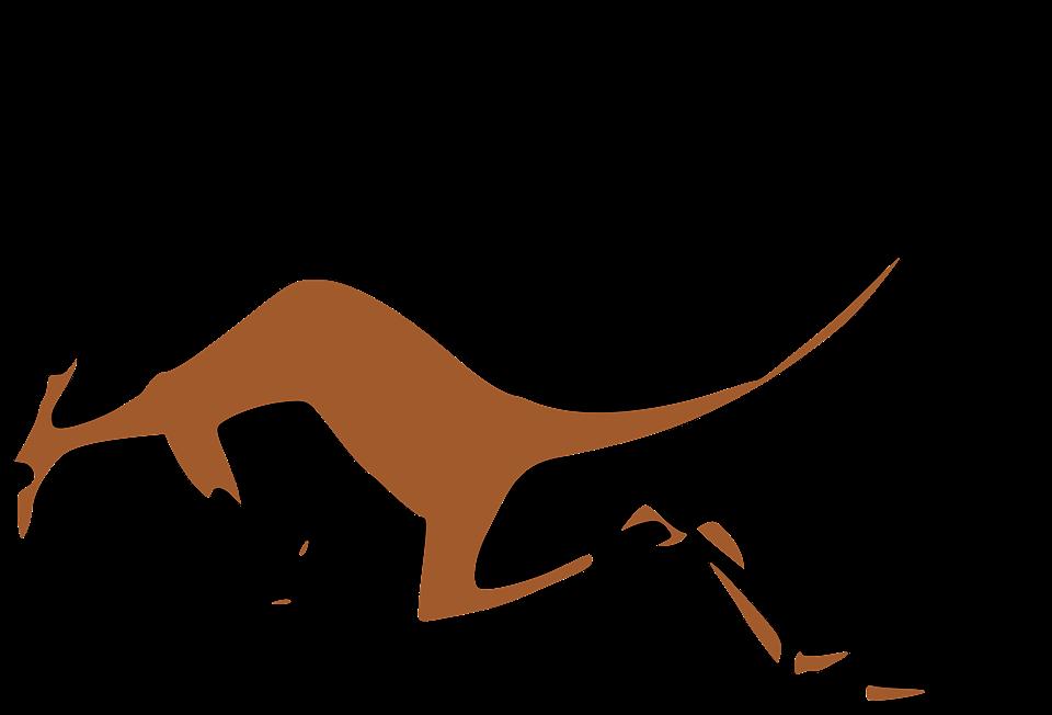 Kangaroo, Bronze, Runs, Left, Brown, Jogging, The Left