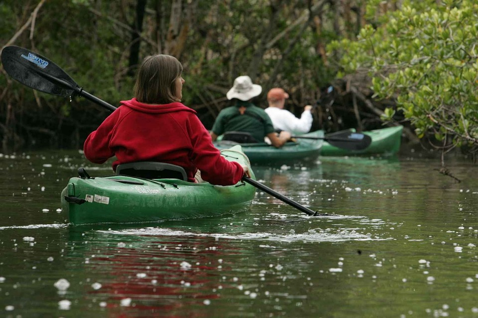 Nature, Pristine, Waters, Calm, Kayaking, Canoeing