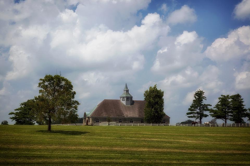 Lexington, Kentucky, Horse Farm, Rural, Stable, Horses