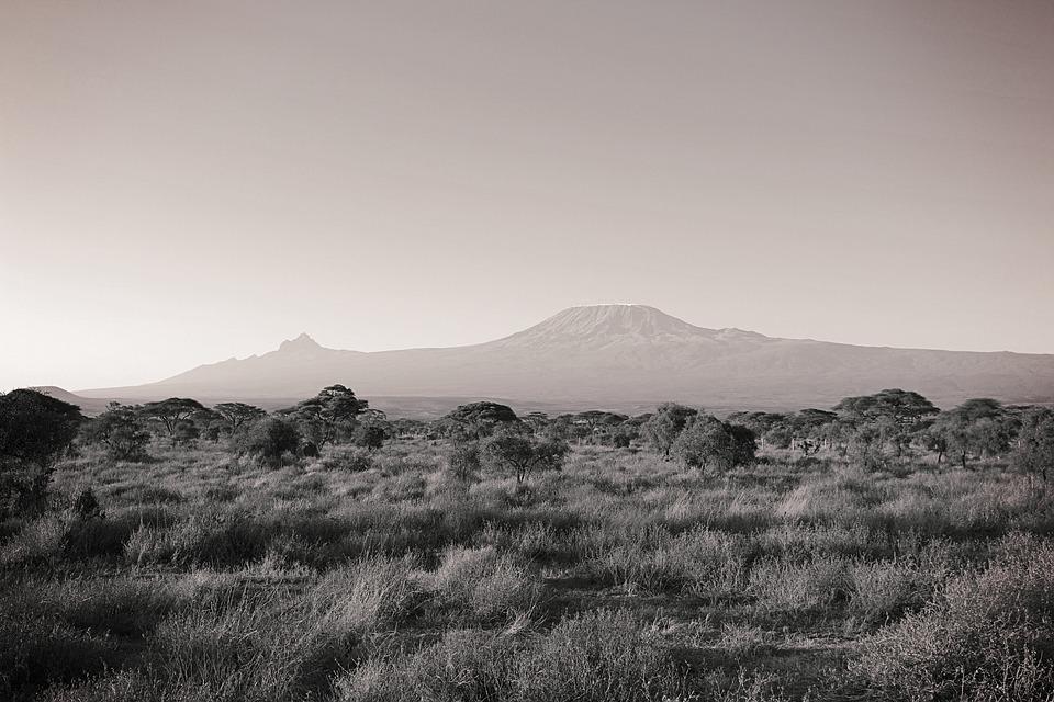 Africa, Kilimanjaro, Kenya, Nature, National Park