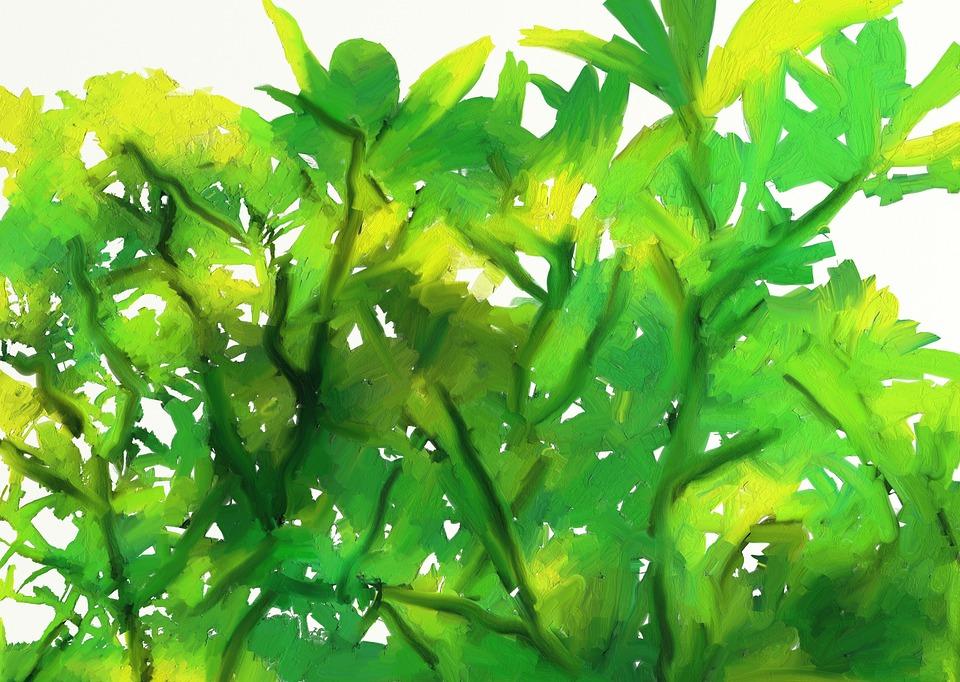 Kumkumam, Kerala, Digital Painting, Tree, Leaves