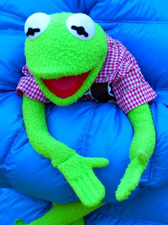 Kermit, Frog, Doll, Green, Blue, Rag Doll