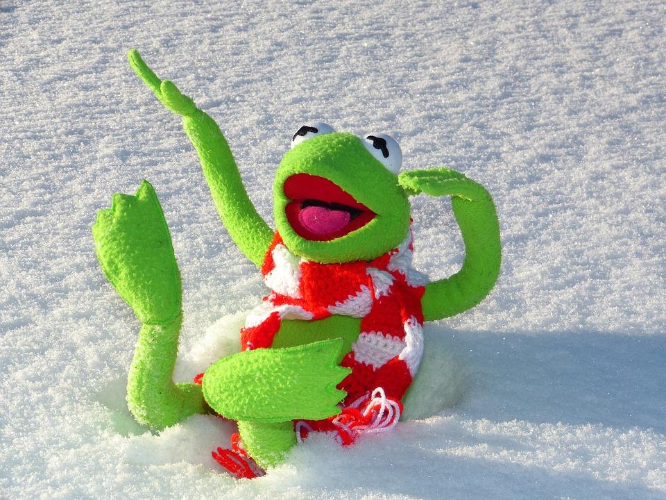 Kermit, Frog, Fun, Snow, Winter, Cold