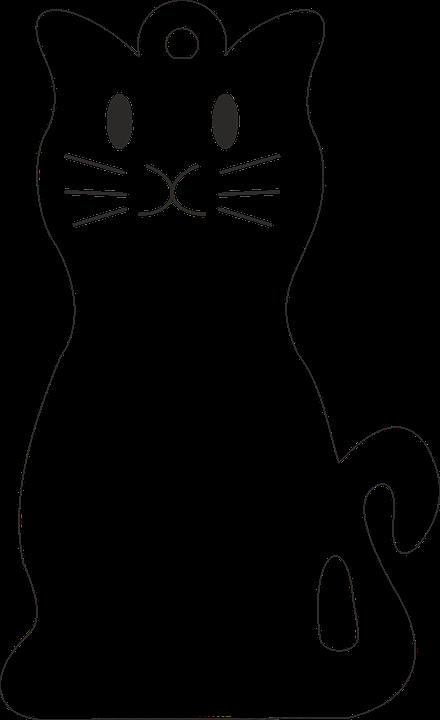 Cat, Door, Key