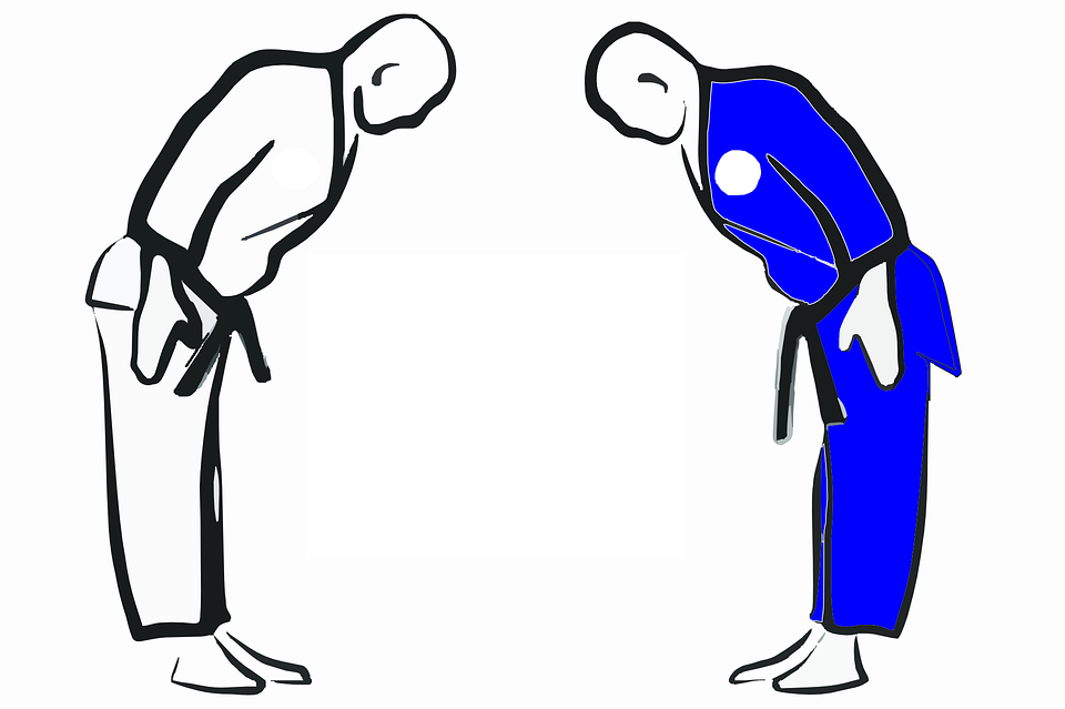 Karate, Strength, Male, Kick, Sport, Belt, Man, Martial