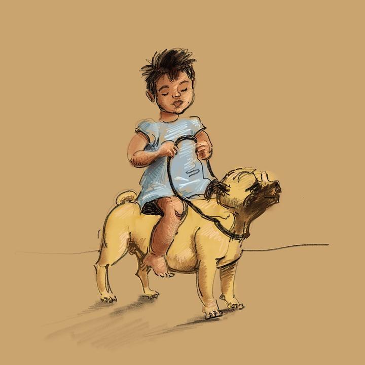 Girl, Child, Dog, Play, Little Girl, Kid, Young