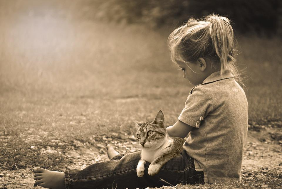 Child, Play, Happy, Kids, Childhood, Joy, Summer, Dirt