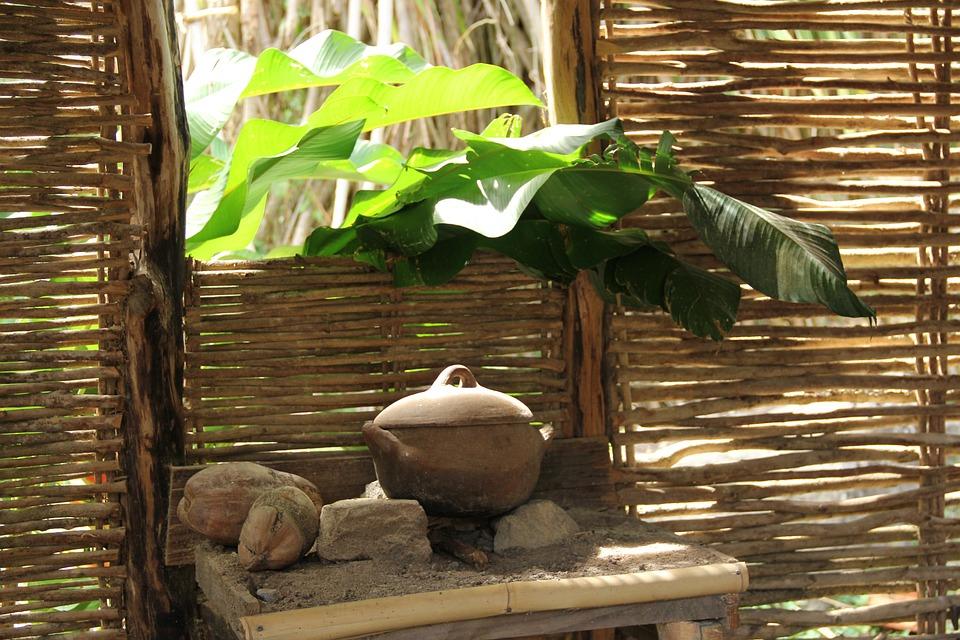 Kitchen, Kitchen Utensils, Cottage, Plant, Cooking