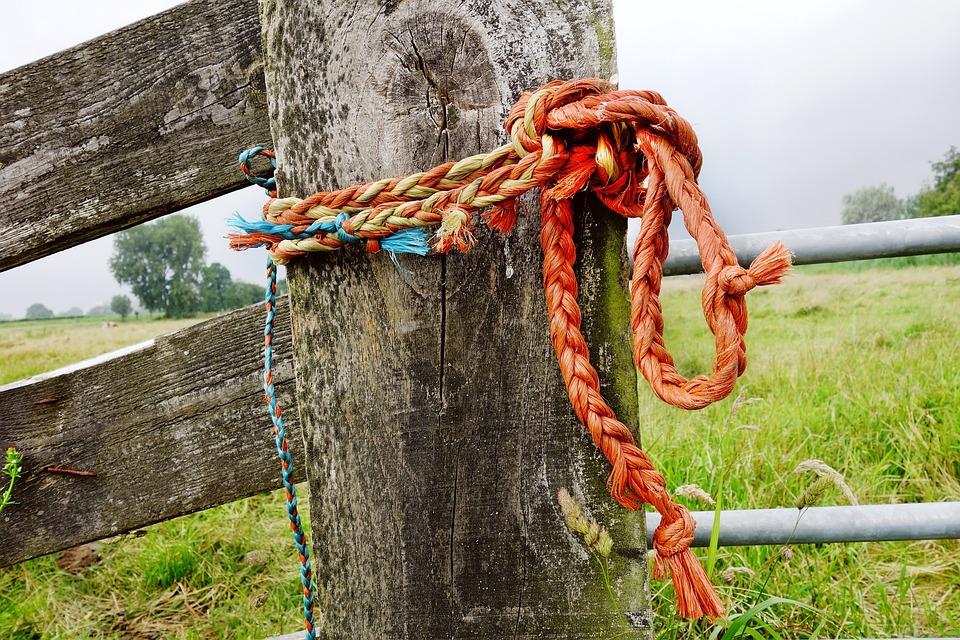 Rope, Cord, Line, Knot, Loop, Tied, Twisted, Braid