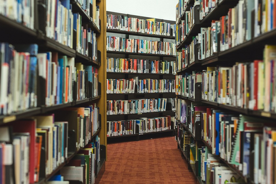 Books, Research, Library, Shelves, Read, Knowledge