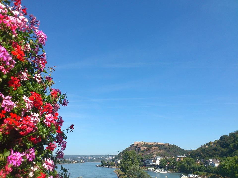 Koblenz, Flowers, Buga, Blütenmeer, Monument, Rhine