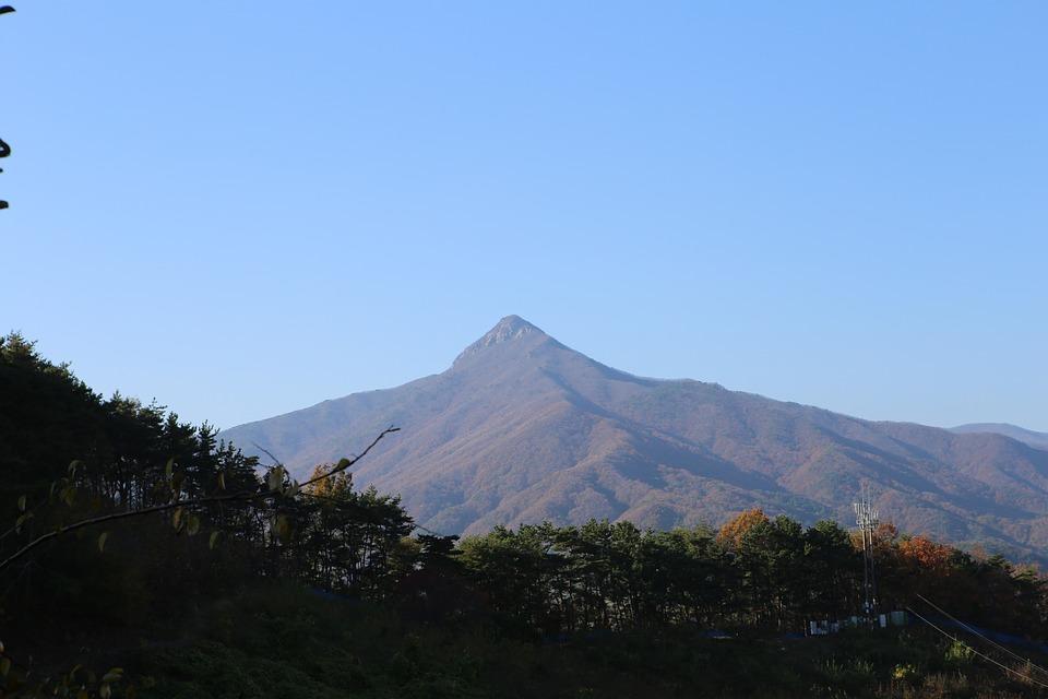 Gwangyang, Fall Travel, Sense Farm, Yeosu, Korea