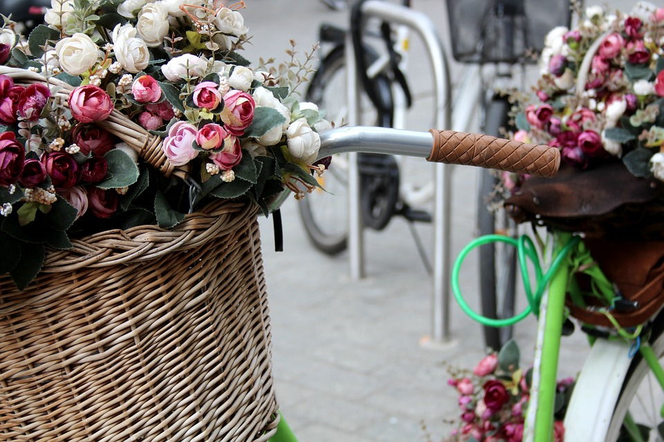 Krakow, Flowers, Bicycle, Trash, Bike, Vintage, Rosa
