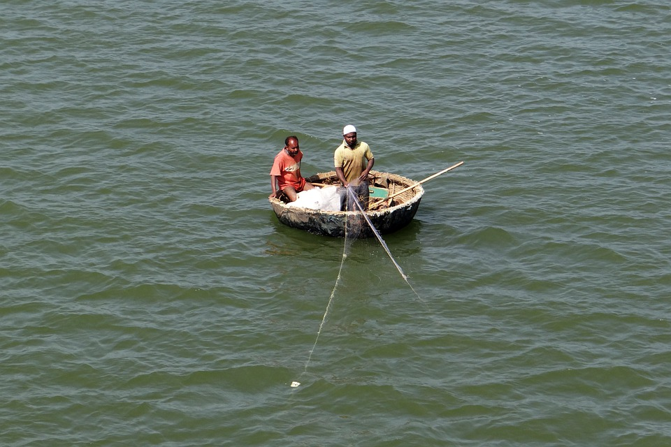 Coracle, Fishing, Dragnet, Krishna River, Backwaters