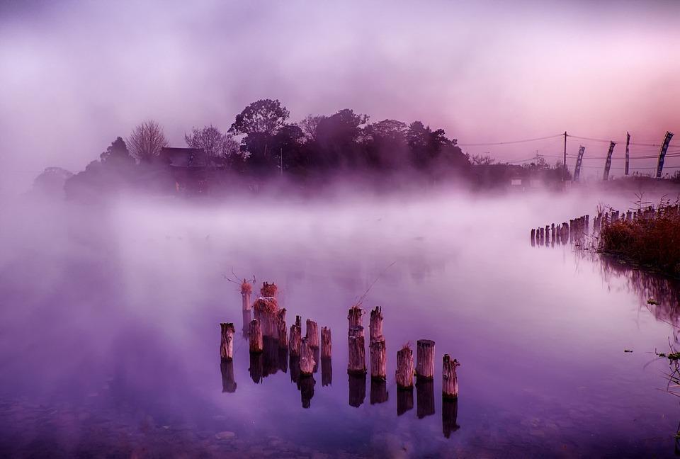Japan, Kumamoto, Floating Island, Fog, Lake, Morning