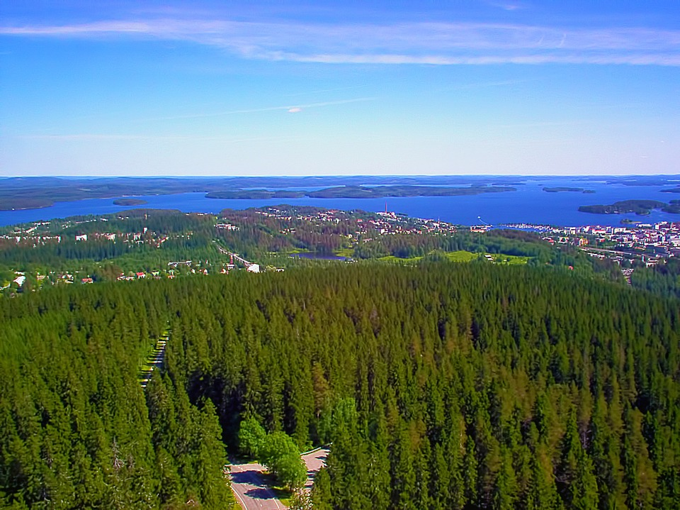 View, Forest, Trees, City, Lake, Puijo, Kuopio, Finnish