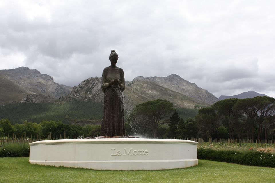 South Africa, Estate Of La Motte, Winery, La Motte, Fig