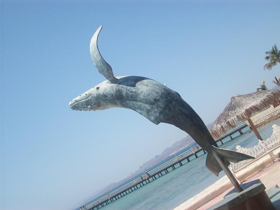 La Paz, Mexico, Whale, Animal, Sea, Statue