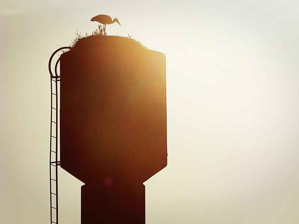 Heron, Water, Tower, Silhouette, Sun, Ladder