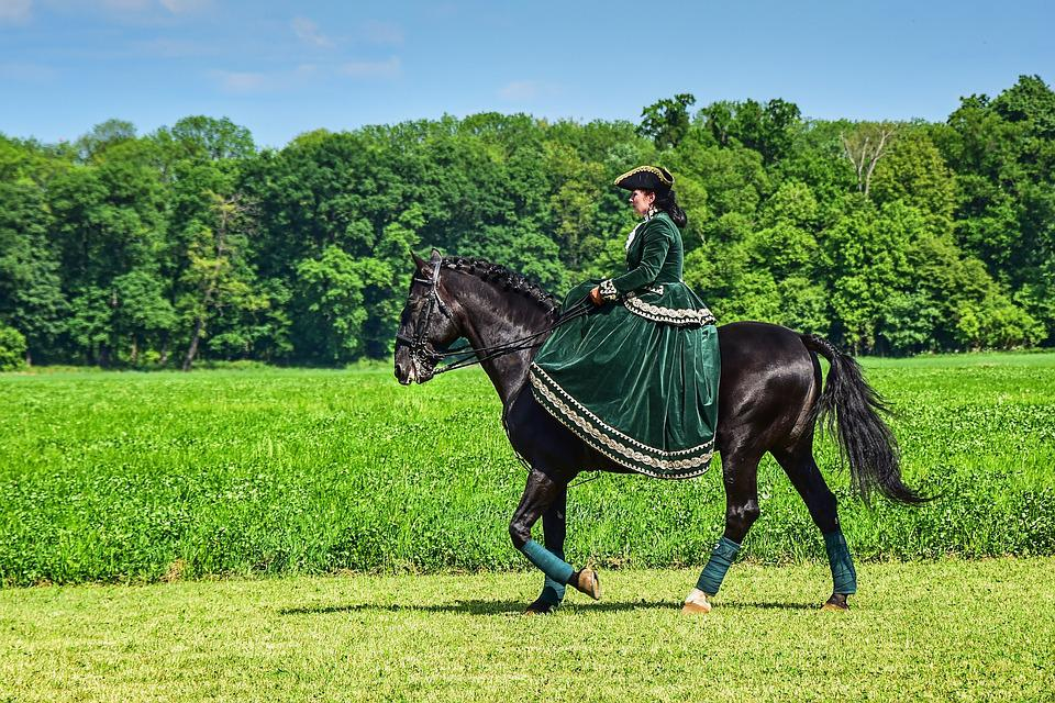 Horse, Lady, Seat, Woman, Bridle, Riding, Caliper, Mare