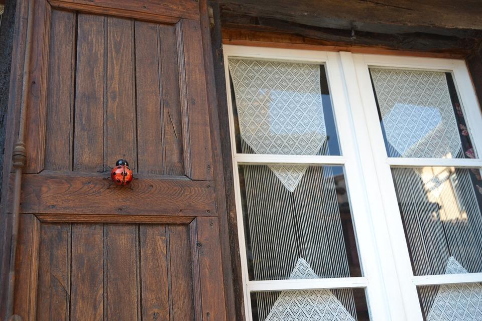 Window, Ladybug, Wood