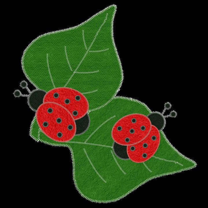 Ladybugs, Embroidery, Lady Beetles, Ladybird Beetles