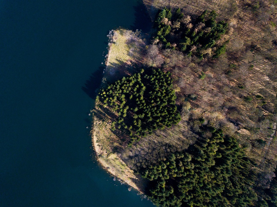 Aerial View, Drone, Dji, Flight, Lake, Germany, Trees