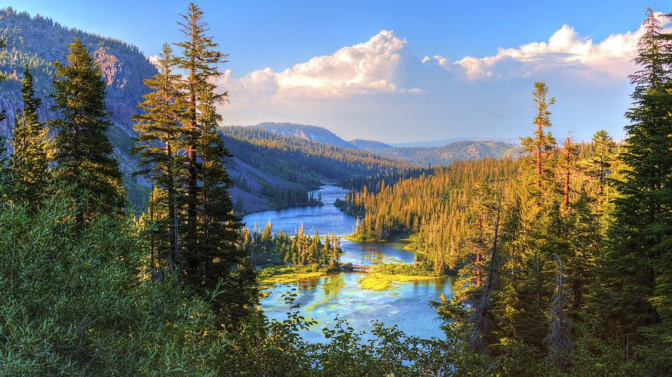 Beautiful, Wilderness, Lake, Stream, Environment