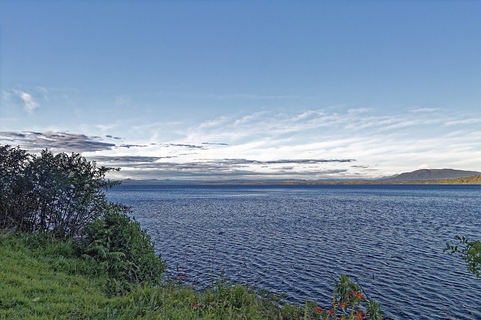 New Zealand, Lake Brunner, Grey District, West Coast
