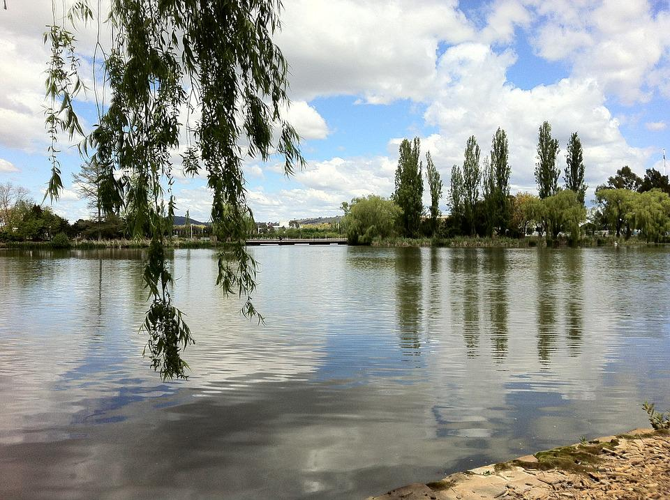 Canberra, Lake Burley Griffin, Australia, Water, Trees