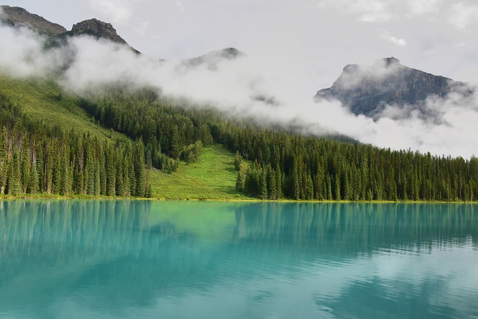 Lake, Water, Mist, Forest, Clouds, Mountain, Reflection