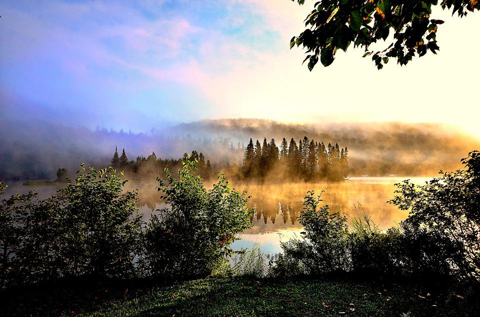 Mist, Lake, Colors, Nature, Trees, Green, Calm