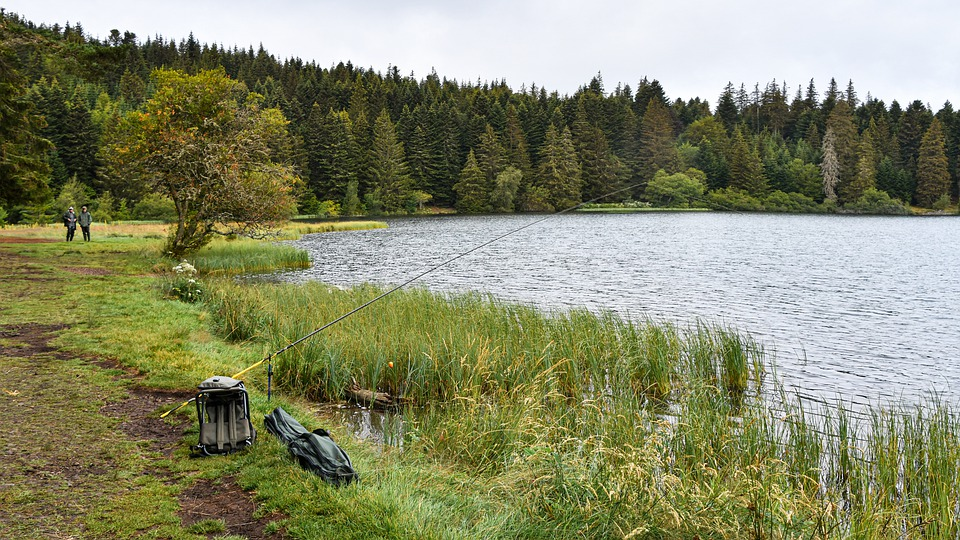 Lake, Pond, Fishing, Nature, Fisherman, Landscape