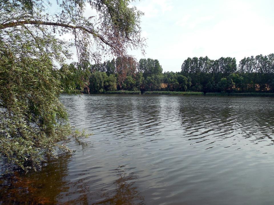 Lake, Water, Bank, Landscape, Ship, Pond