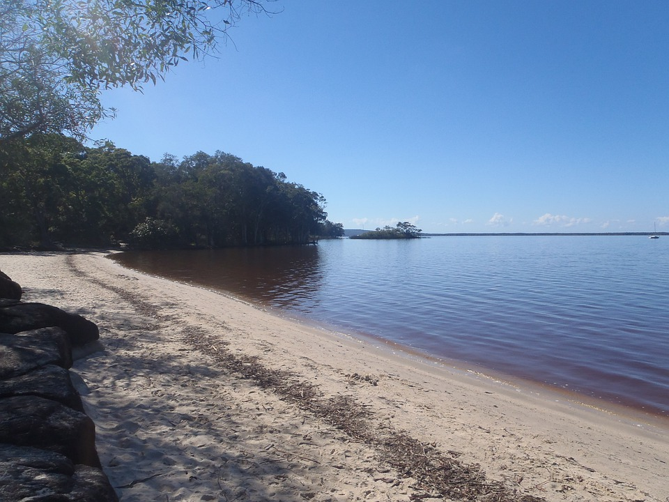 Lake, Beach, Bank, Nature